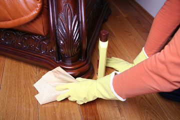 cleaning a sofa with furniture cleaner